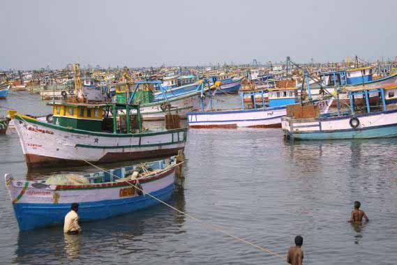 Sri Lankan Navy arrests 31 Tamil Nadu fishermen