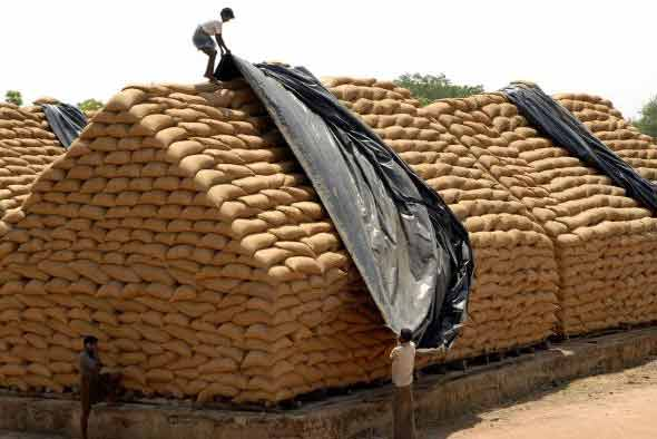 Government allocates 194.04 lakh tons of foodgrains for BPL families during 2014-15