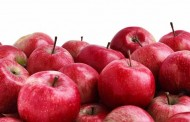Apple imports: US, EU question India's restriction on imports