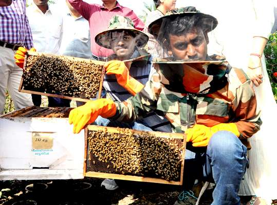 """""""Madhu Sandesh day"""" celebration to promote pollination amongst farmers & beekeepers"""