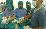 Sahyadri Hospitals successfully performs cataract surgery on 2 months old with congenital heart defect