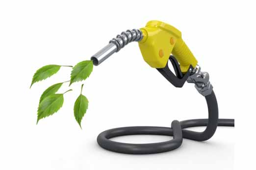 Automobile Industry stalling while government keen on better fuels