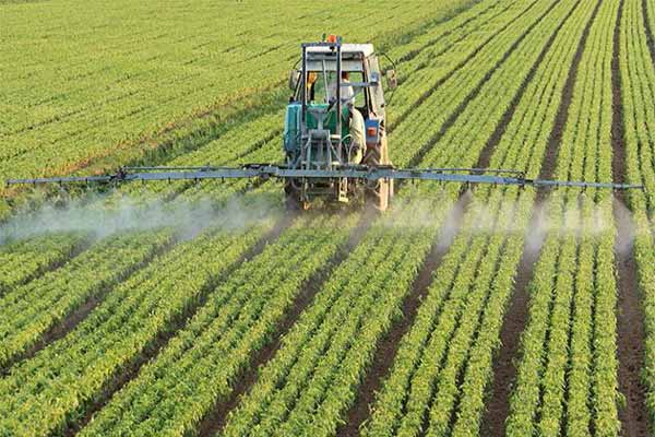 Sustainable agriculture: A key to farmers' success