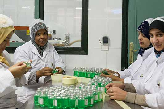 Selling Morocco's secret of eternal youth