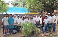 6000 Trees and Counting: Blossom Kochhar Group of Companies continues its Green Drive