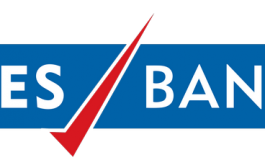 This is the reset phase for Yes Bank: Ravneet Gill, MD & CEO – YES BANK