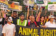 Activists March in Delhi for Animal justice and Vegan Awareness